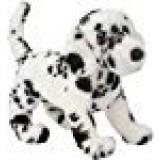 Douglas Winston Dalmatian
