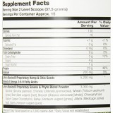 Lifetime Life's Basics Plant Protein with Greens, 1.29 lbs