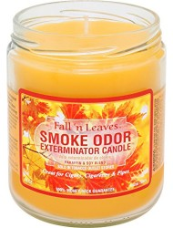 Smoke Odor Exterminator 13oz Jar Candle, Fall N Leaves