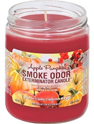 Smoke Odor Exterminator 13oz Jar Candle, Apple Pumpkin