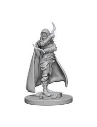 WizKids Pathfinder: Deep Cuts Unpainted Miniatures: Human Female Rogue