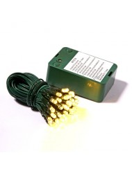 50 Light Green Wire Warm White Battery Operated LED Set with Timer