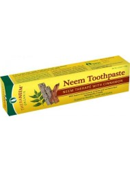 Theraneem Organix Herbal Neem Toothpaste,With Cinnamon, 4.23 Ounce (Pack of 2)