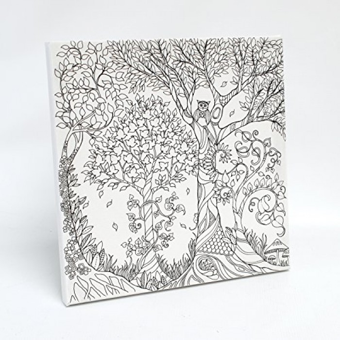 GeeksHive: Johanna Basford Enchanted Forest Coloring Canvas - Owl ...
